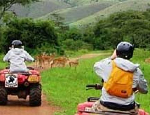 Thrilling Quad biking safaris in Lake Mburo National Park – Uganda safari News