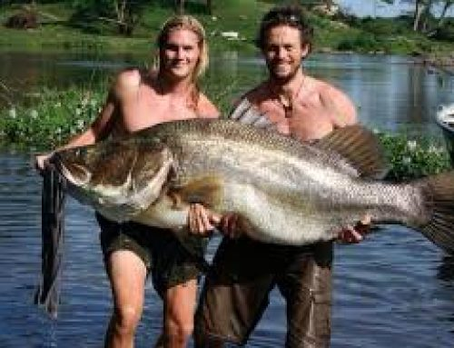The amazing sport fishing adventure in Lake Mburo National Park -Uganda Safari News