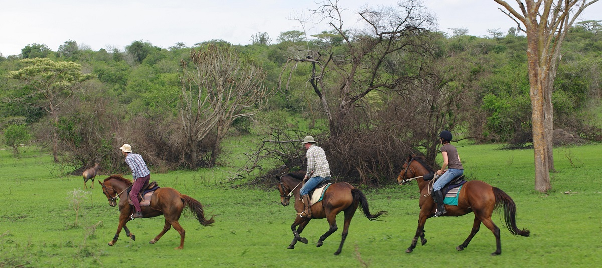 Horse riding in Lake Mburo National Park Uganda
