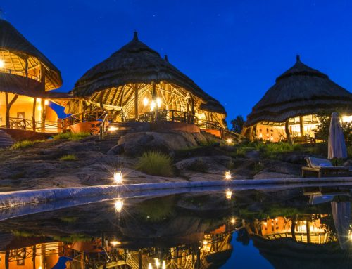 Uganda safari accommodation in Lake Mburo National Park; Mihingo Lodge – Uganda safari News