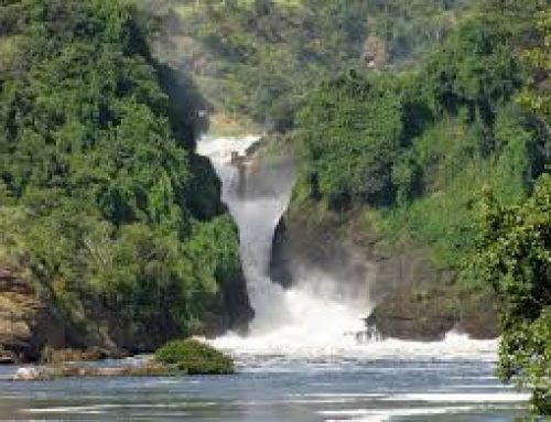 Uganda's Cabinet Agrees to Allow a Feasibility Study Done on Murchison Falls For a Hydropower Plant Construction