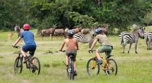 cycling in lake mburo national park uganda